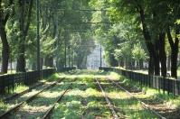 green tracks